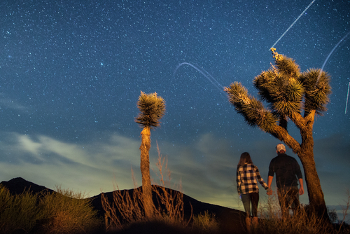 couple watching meteor shower
