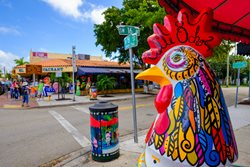 Explore the Charms of Little Havana