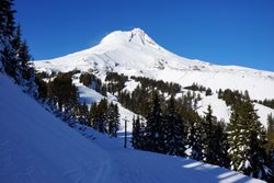 Mount Hood National Forest: Top Spots for Winter Sports