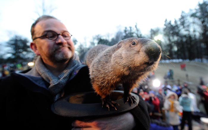 9 Fun Facts About Groundhog Day