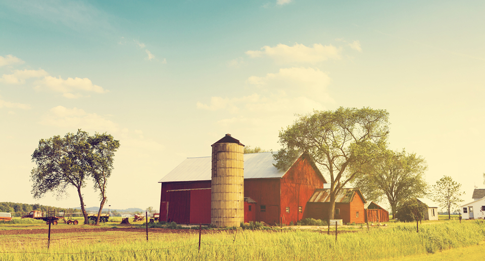 american farmland on countryside