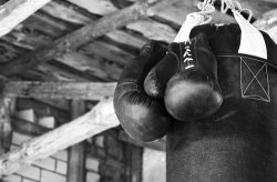Boston Boxing: The Prizefighting Immortals of Beantown