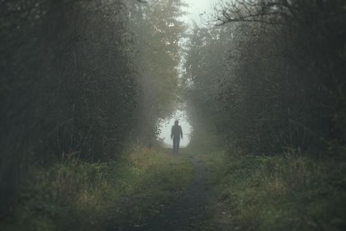 A photo of a person walking through a misty tunnel of trees.
