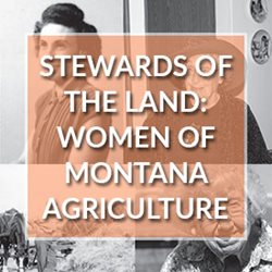 Stewards of the Land: The Women of Montana Agriculture