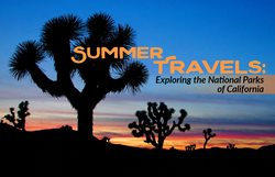 Summer Travels: Exploring the National Parks of California